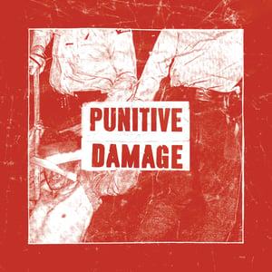 """Image of (Pre-Order) Punitive Damage - Strike Back 7"""""""