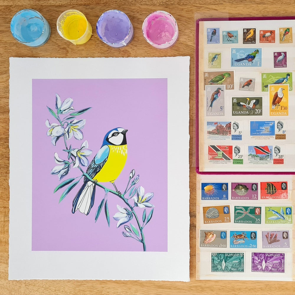 Image of Blue Tit and Bellflower (print)