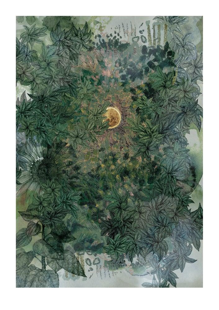 Image of Garden Journal - Autumn Sun