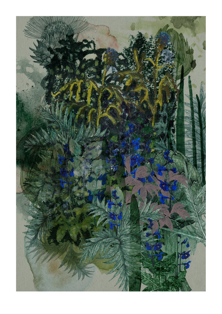 Image of Garden Journal - Blue Cardoon & Sage