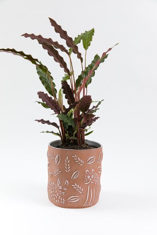 Image of Large Creature Planter Pots - No.1