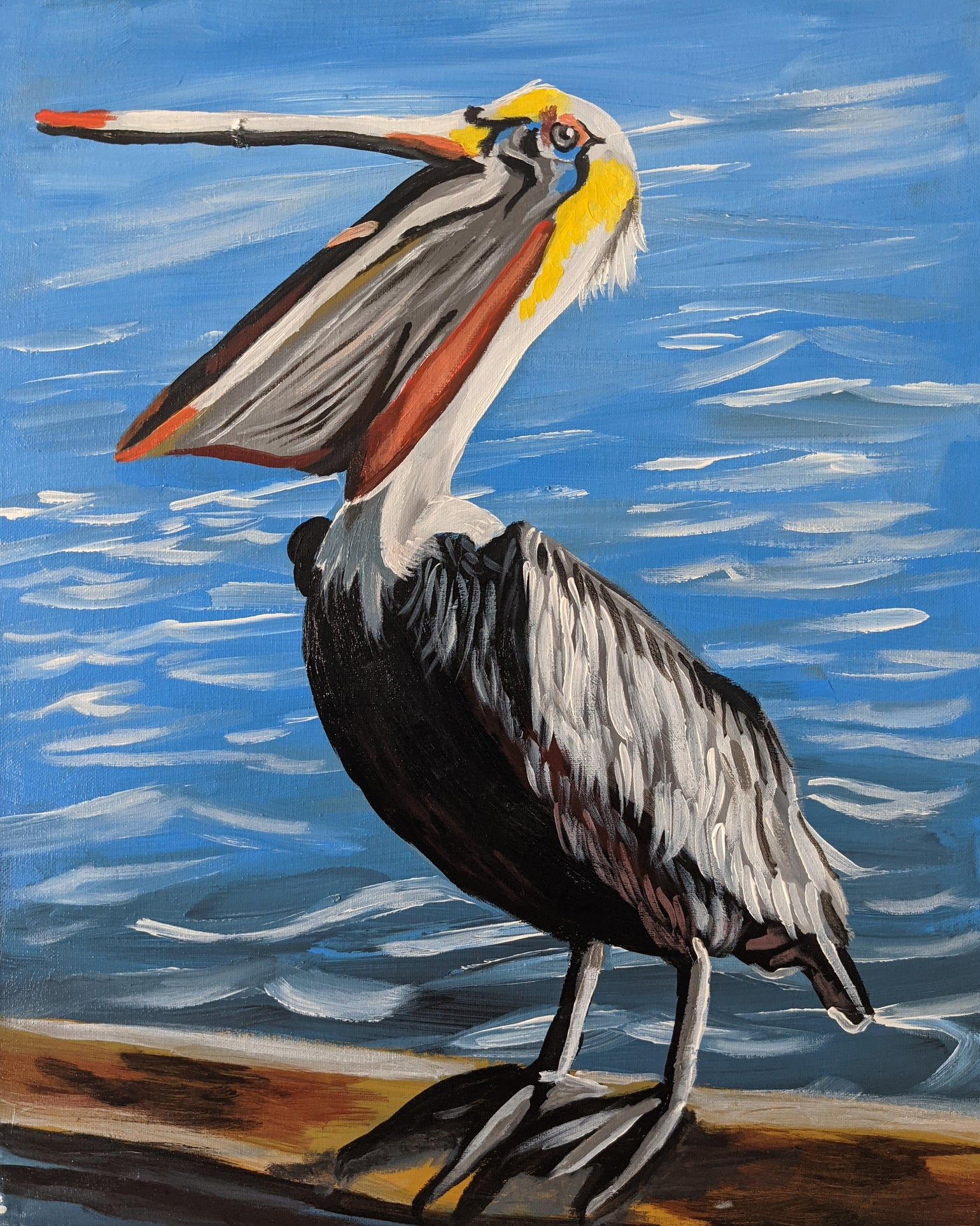 Image of The Pelican