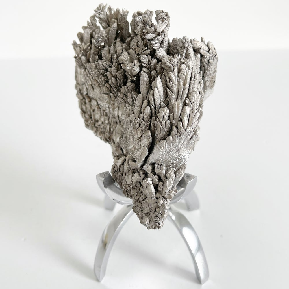 Image of Magnesium Ore No.18 + Chrome Claw Stand