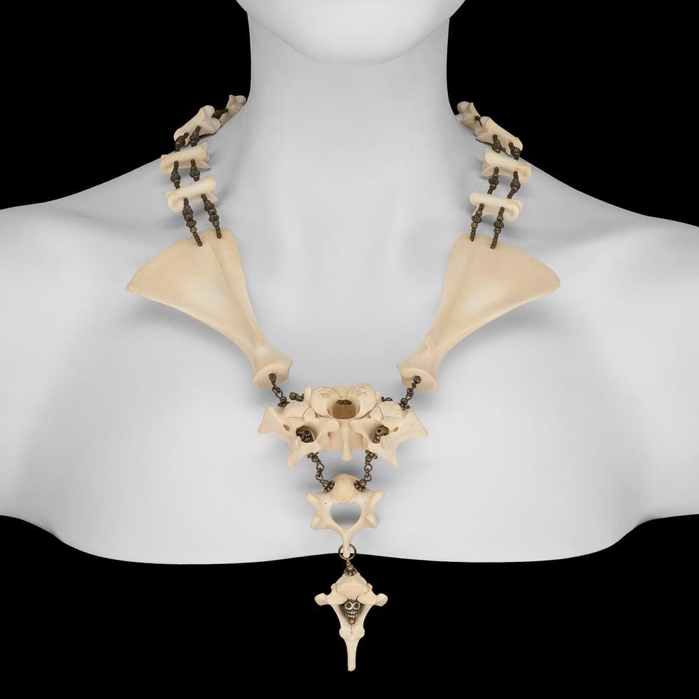 """Image of """"Alvez"""" Fawn Bone Necklace"""
