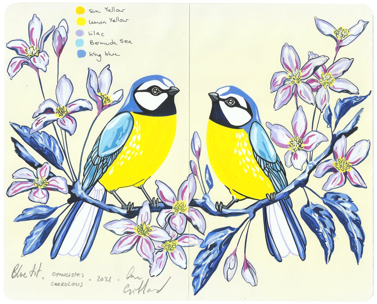 Image of Blue Tits and Clematis