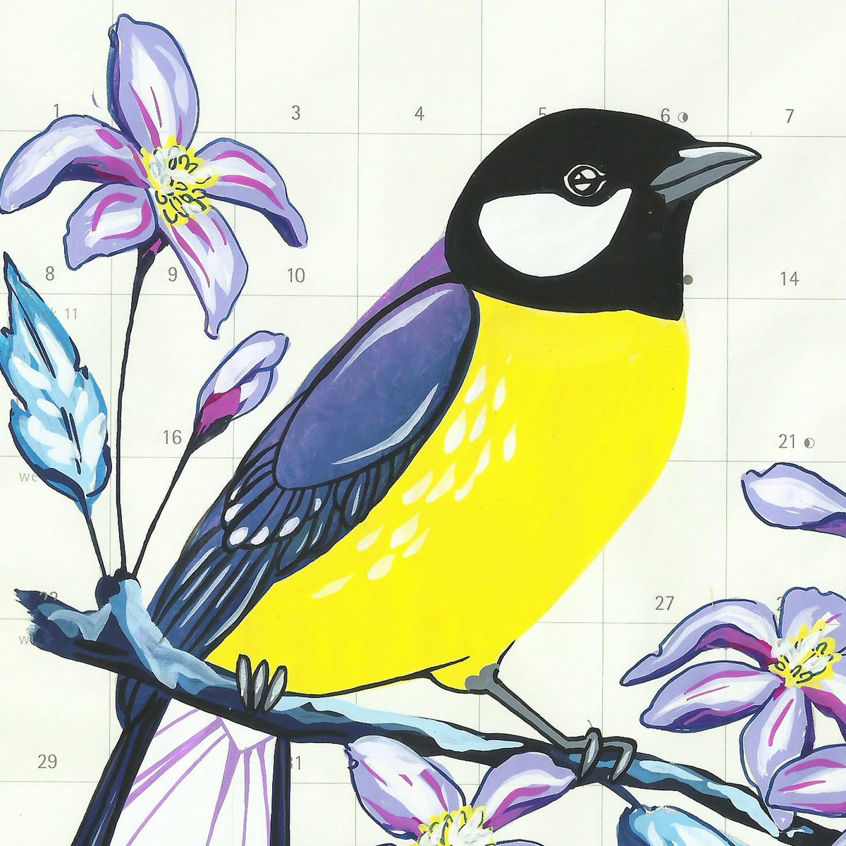 Image of Great Tits and Clematis