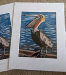 Image 2 of The Pelican