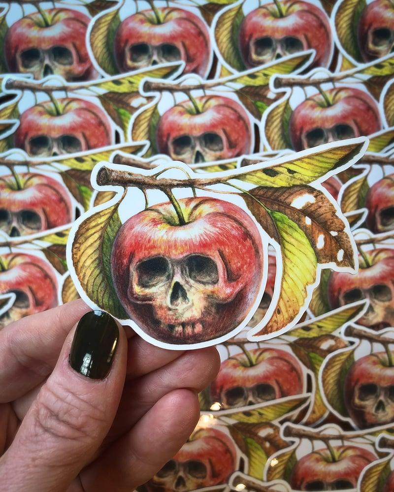 Image of Apple Augury Sticker