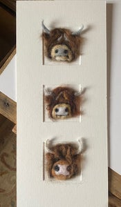 """Image of """"Three in a Box Highland Cows"""""""