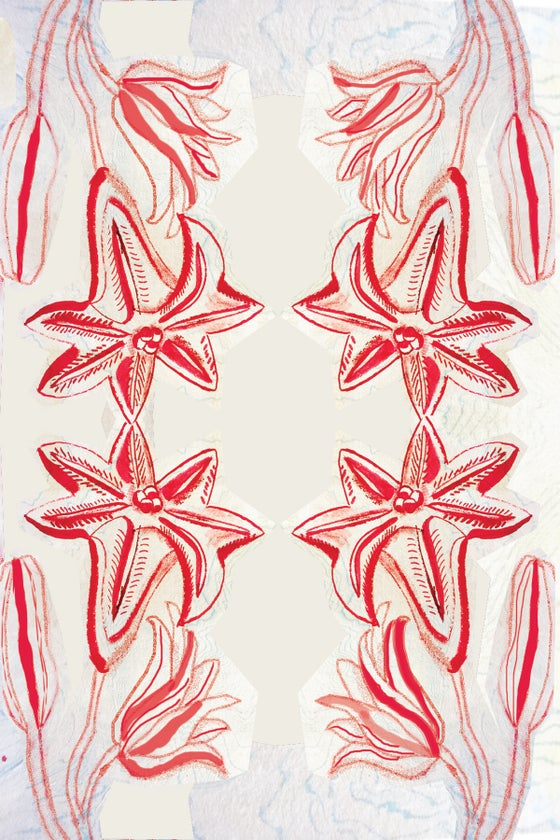 Image of Striped Lily