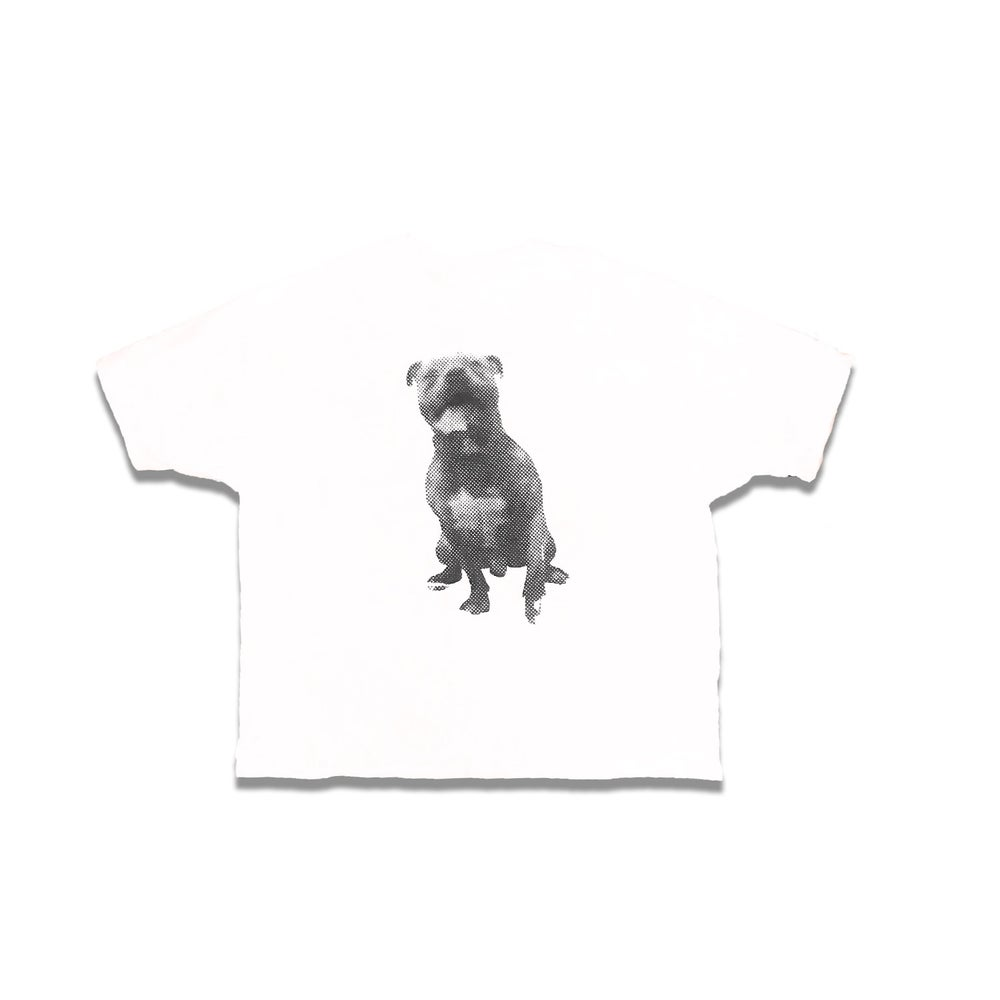 Image of big pup s/s
