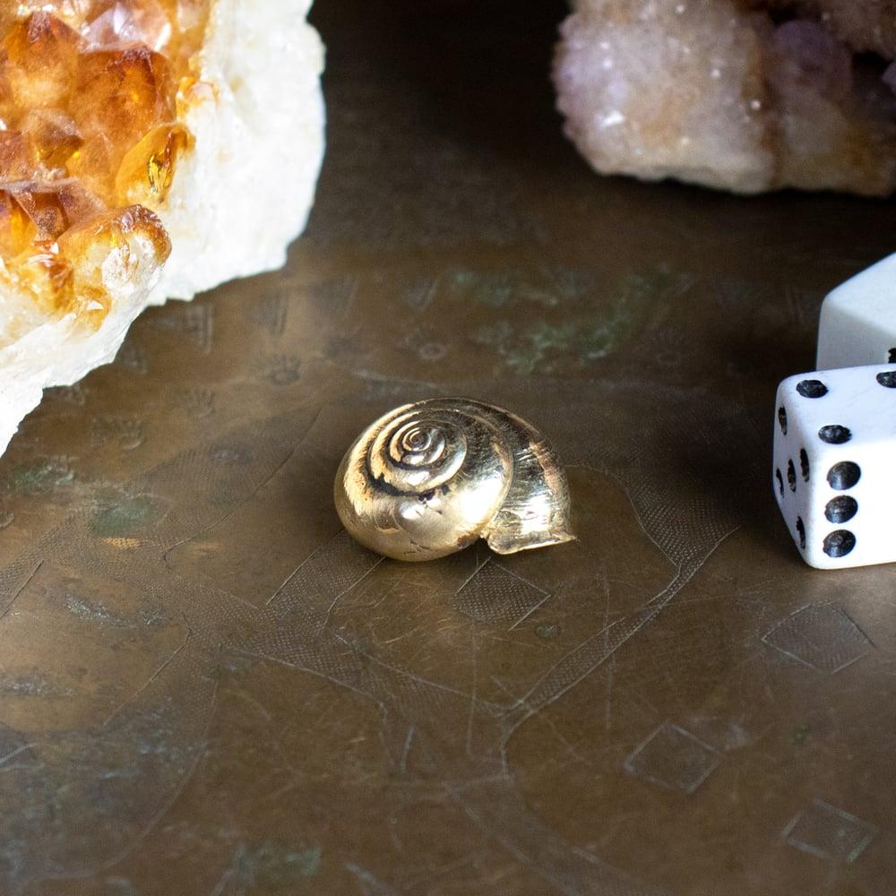 Image of Snail Shell Objet d'Art by Kria