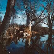 Image of Marfa Landscape #1