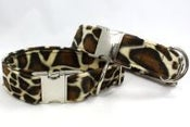 Image of Giraffe Dog Collar on UncommonPaws.com