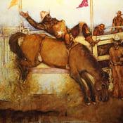Image of Julia Creek Rodeo