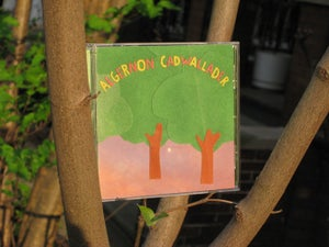 Image of ALGERNON CADWALLADER some kind of cadwallader CD