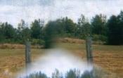 "Image of Brian Grainger/Ophibre split ""#3"" C44 (MU01)"
