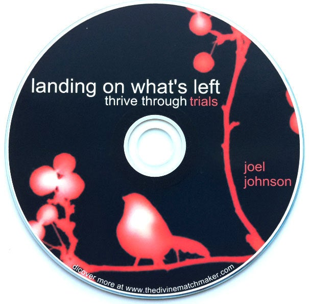Image of Landing on What's Left CD