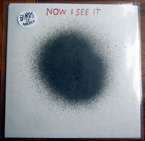 Image of birds of america 7 inch record