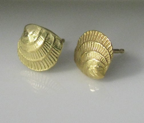 Image of Cross Barred Venus 18k Gold Seashell Earrings