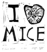 Image of I Owl Mice