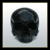 Image of Gloss Black Human Skull