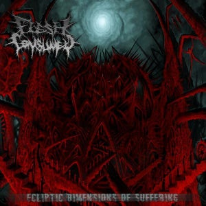 "Image of ""Ecliptic Dimensions Of Suffering"" LP (2010), OR ""Mutilate, Eviscerate, Decapitate"" LP (2008)"