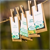 Image of Seed Packet Escort Cards