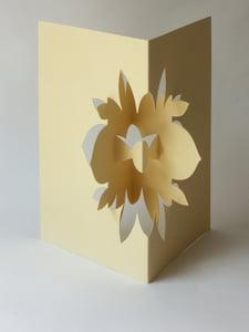 Image of lotus flower