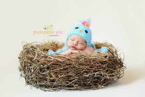 Image of Organic Realistic Birds Nest Photo Prop-Material option A.