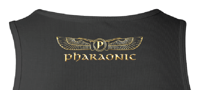 Image of Men's Custom Heru Gold Foil Tank Top