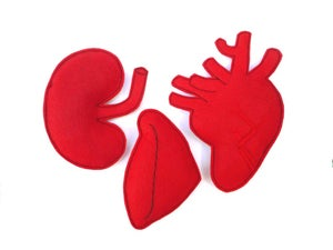 Image of 3 Organs Organic Catnip CAT TOY Heart, Liver, Spleen Handmade by Oh Boy Cat Toy