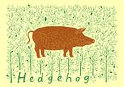 Image of Hedgehog screenprint