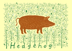 Image of Hedgehog screenprint