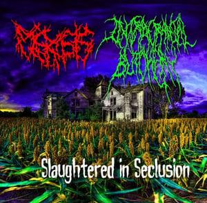 Image of Intracranial Butchery/ Plerosis SPLIT CD