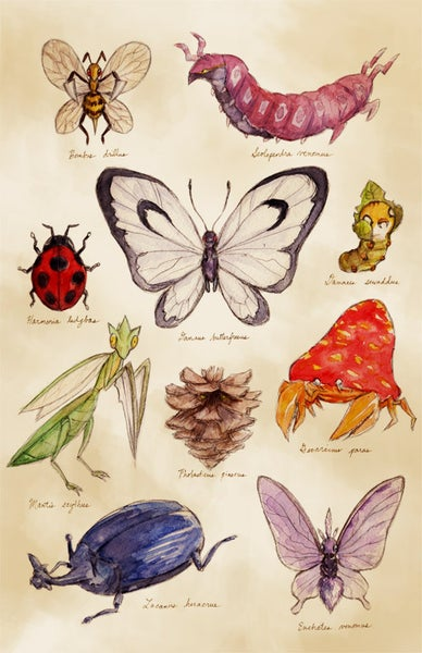 Image of Scientific Illustrations (Pokémon) - Print 12x18