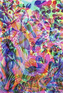 Image of Carnovsky 'La Selva' artwork