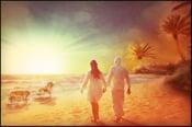 Image of Dog Beach | Landscapes