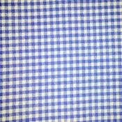 Image of Light Blue Gingham