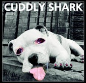 Image of Cuddly Shark