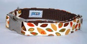 Image of Falling Leaves Dog Collar