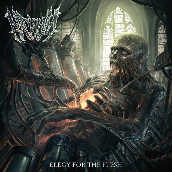 Image of Elegy for the flesh