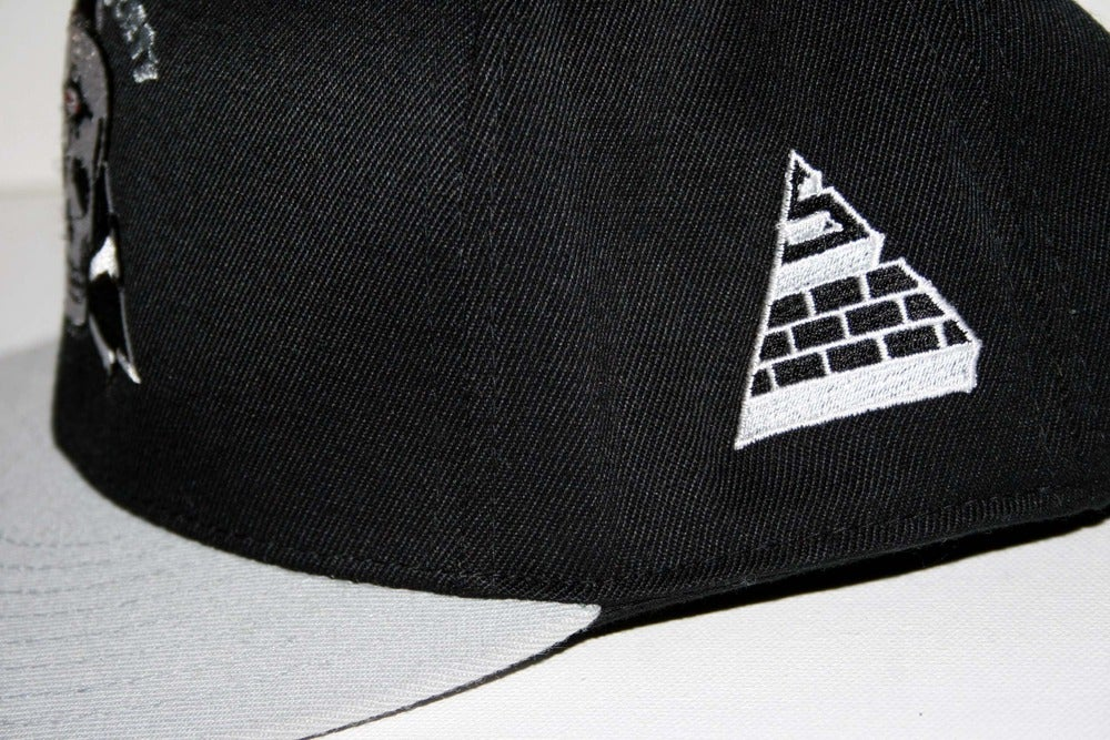 Image of Enlightened Fitted