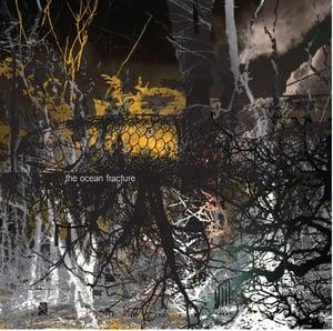 Image of Cesarium / Black Lung Optimism CD single
