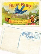 Image of 25 blue bird antiques postcards