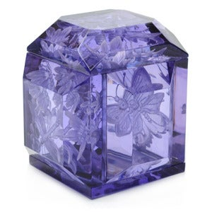 "Image of ""Butterfly"" Petite Lucite Box"