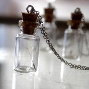 Image of Dandelion Vial Pendant Necklace