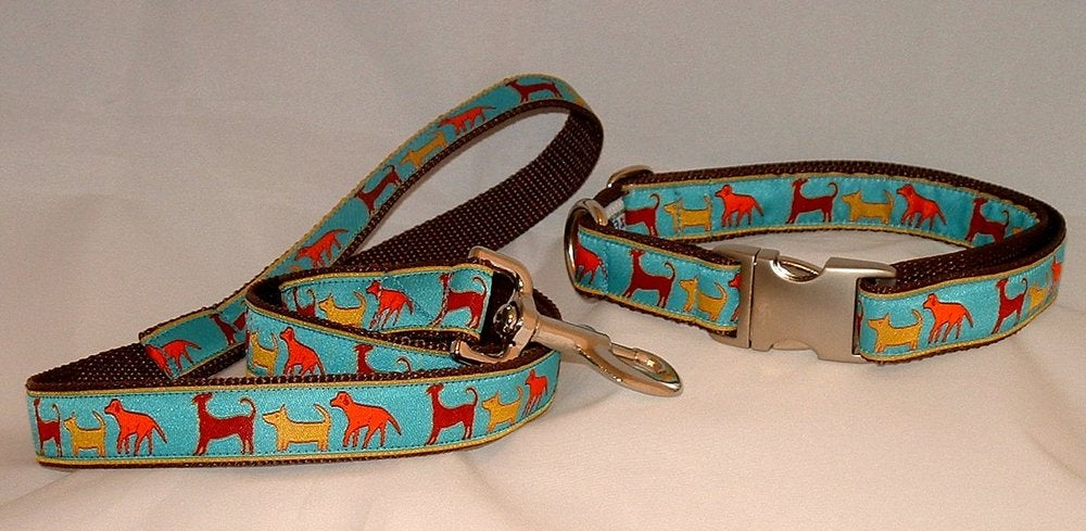 Dog Trail Dog Collar