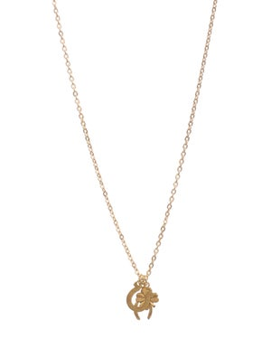 Image of luck charm necklace