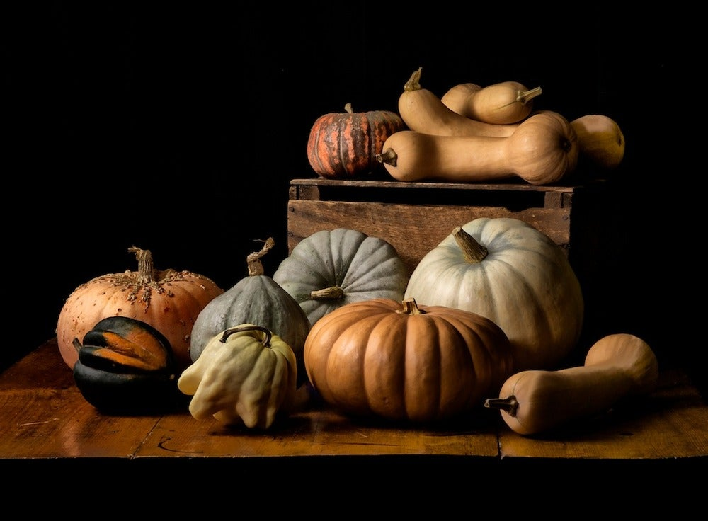 Image of Butternut, Peanut, Sweet Meat, Speckled, & Blue Hokkaido squash, Ghost, Cheese, & Blue pumpkin